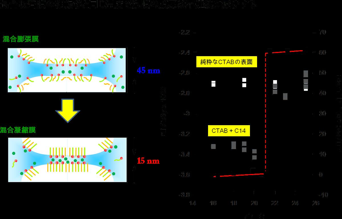 九州大学 理学研究院 理学府 理学部