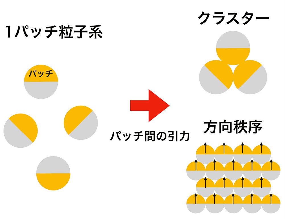 https://www.sci.kyushu-u.ac.jp/koho/qrinews/images/190307/fig3-612bca8e.png